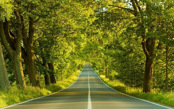 LandscapePhotographsOfBeautifulRoads10_007